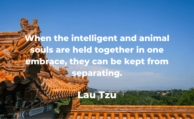 quotes by lao tzo