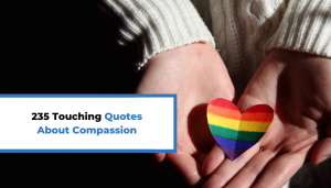 Read more about the article 235 Touching Quotes About Compassion