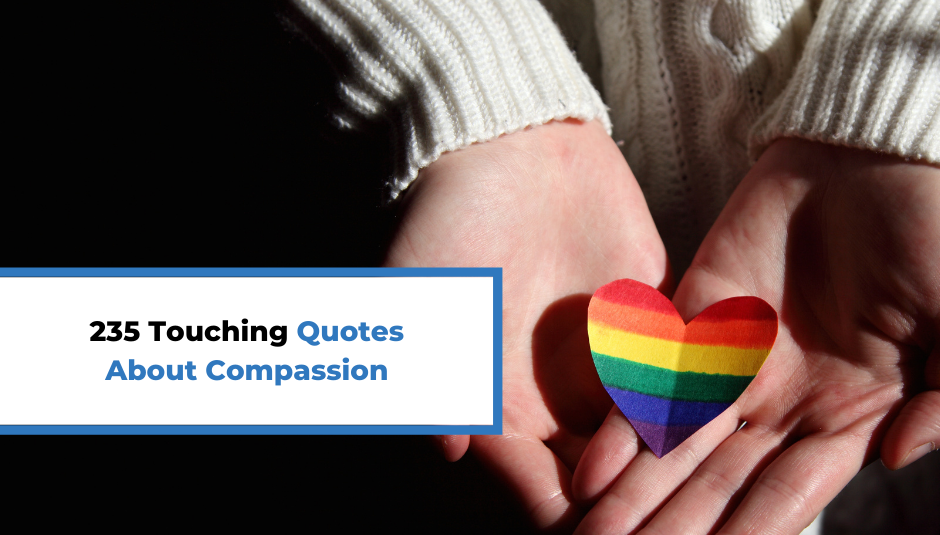 You are currently viewing 235 Touching Quotes About Compassion