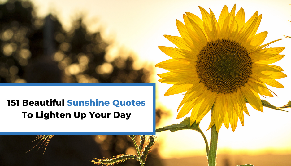 You are currently viewing 151 Beautiful Sunshine Quotes To Lighten Up Your Day