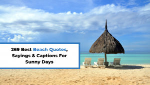 Read more about the article 269 Best Beach Quotes, Sayings & Captions For Sunny Days