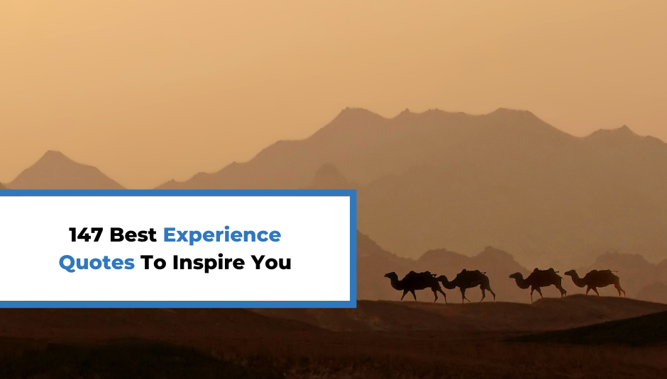 Read more about the article 147 Best Experience Quotes To Inspire You