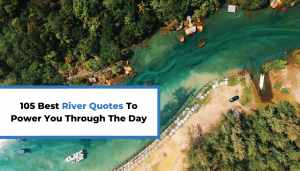 Read more about the article 105 Best River Quotes To Power You Through The Day