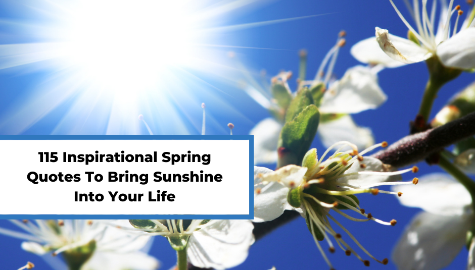 Read more about the article 115 Inspirational Spring Quotes To Bring Sunshine Into Your Life