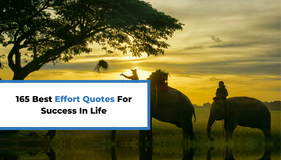 Read more about the article 165 Best Effort Quotes For More Success In Life