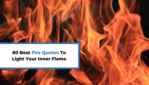 Read more about the article 80 Best Fire Quotes To Light Your Inner Flame