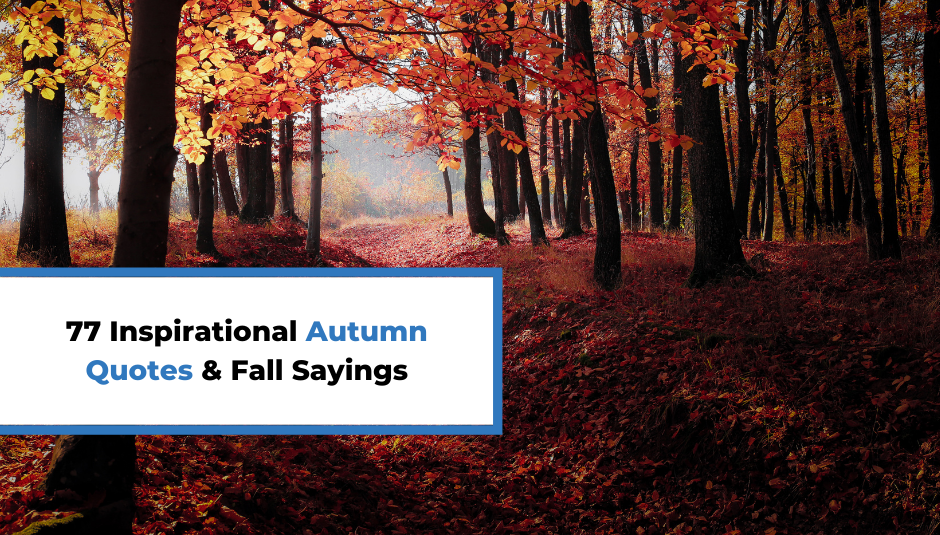 Read more about the article 77 Inspirational Autumn Quotes & Fall Sayings