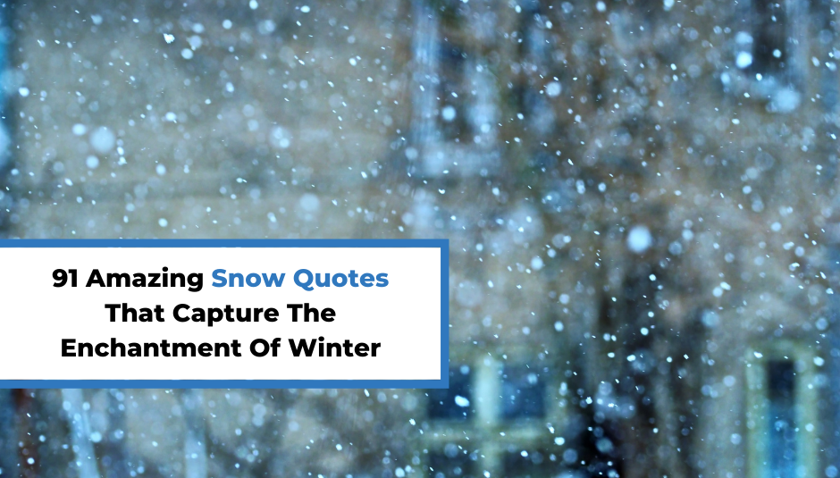 Read more about the article 91 Amazing Snow Quotes That Capture The Enchantment Of Winter